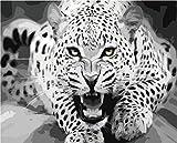 YUHHGFK Pintar por Numeros Adultos Leopardo Blanco y Negro Pintura al óleo de DIY por Números con Pinceles y Pinturas para Adultos y Niños Decoraciones para el Hogar- 40 x 50 cm (con Marco de Madera)