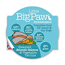 Little Big Paw Steamed Atlantic Salmon and Vegetables,