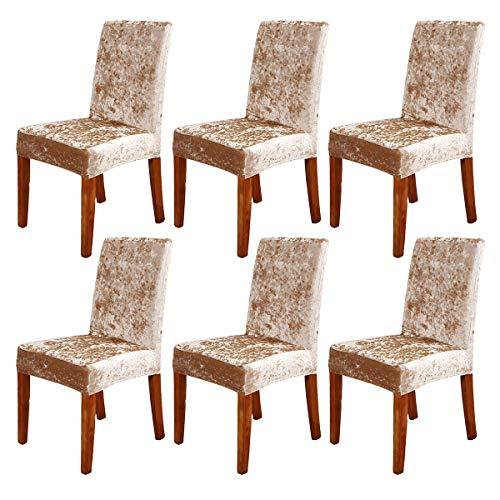 ele ELEOPTION Fundas elásticas para silla de terciopelo aplastado, protector de silla de terciopelo extraíble para hotel, oficina, banquete de boda, sala de estar, comedor (champán, 6 unidades)