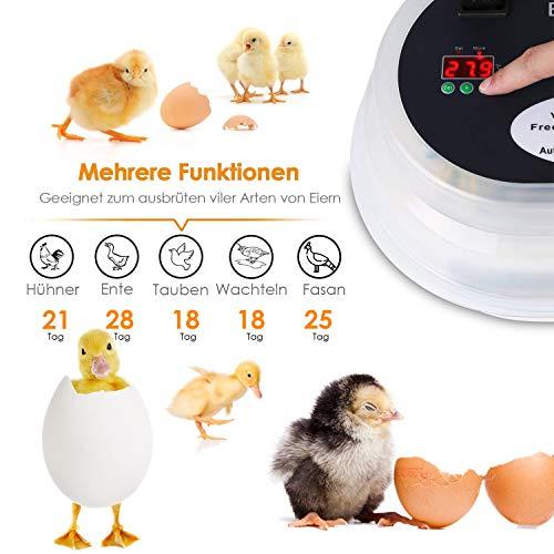 amzdeal Inkubator Brutkasten 9-12 Hühnereier - 4
