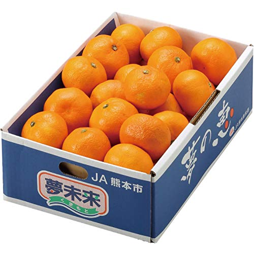 みかん 夢の恵 プレミアムみかん糖度12度以上 青秀 L〜Sサイズ 2.5kg JA熊本市 夢未来 蜜柑 ミカン
