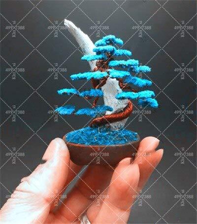 Ferry Neu! 50 Stück Mini Kiefer Bonsai Topf Landschaft Japanische fünf Nadel Pine Bonsai Miniascape Pinus Thun, DIY Hausgarten: 4