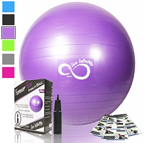 Exercise Ball -Professional Grade Exercise Equipment Anti Burst Tested with Hand Pump- Supports 2200lbs- Includes Workout Guide Access- 55cm/65cm/75cm/85cm Balance Balls (Lilac Purple, 65 cm)