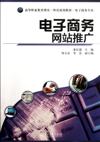The Electronic Commerce Website Promotion (Chinese Edition)