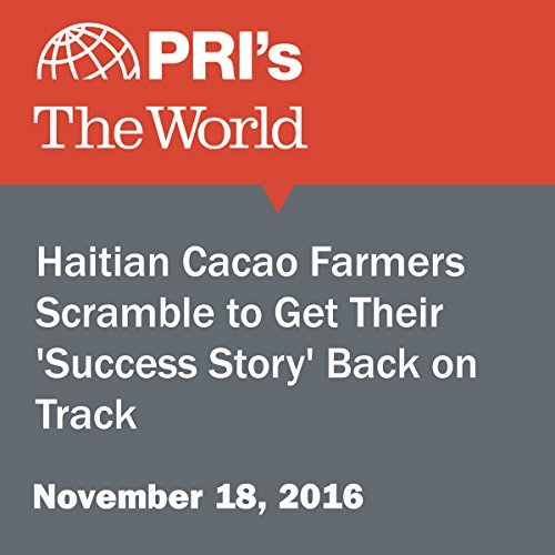 Haitian Cacao Farmers Scramble to Get Their 'Success Story' Back on Track audiobook cover art