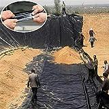 BAIYING Fischteichfolie, 0,5 MM HDPE Reißfestigkeit Anti-Versickerung Hohe Flexibilität Gartenpools Membran Zum Koi-Teich (Color : Black, Size : 2X2.5M)