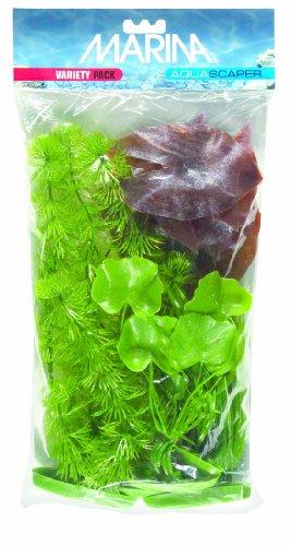 Marina Aquascaper Variety Pack inkl. Hornkraut, Zwerglie, Korkenzieher Vallisneria, Bananenpflanze, Haargras