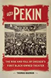 The Pekin: The Rise and Fall of Chicago's First Black-Owned Theater (New Black Studies) (English Edition)