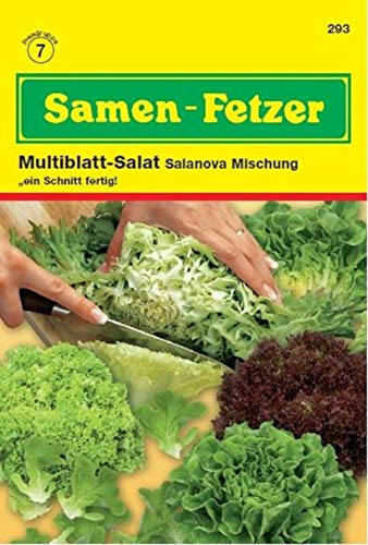 Blattsalat Salanova Mischung, Salatsamen - Mischung aus vier verschiedenen Sorten