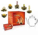 Creano Teeblumen Mix - Geschenkset 'ErblühTee' mit Glaskanne Weißtee (6 verschiedene Sorten)