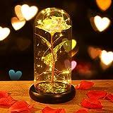 Minterest Rosas Bella y Bestia,Rosa Eterna,Rosa de Cristal con luz LED,Regalos para San Valentin,Regalos San Valentin para Mujer