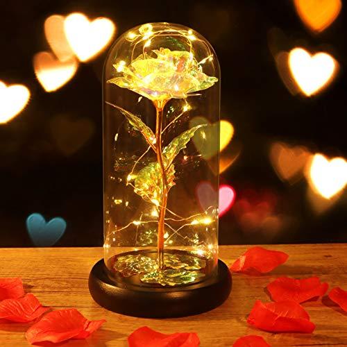 Minterest Rosa Eterna,Rosa Bella y Bestia con luz LED, Regalos Originales para Mujer,Regalos Mujer(Rosa)