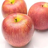 果物 ギフト サンふじ 糖度センサー 贈り物 (10kg)