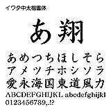 イワタ中太楷書体Pro OpenType Font for Windows [ダウンロード]