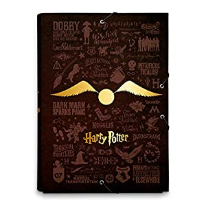 ERIK - Carpeta solapas Gafas, Harry Potter 3