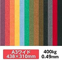 厚紙カラーペーパー『ケンラン(特色) 400Kg(=0.49mm)』 A3ワイドサイズ(438×310mm) 20枚【印刷・工作・名刺・カード・紙飛行機・ペーパークラフト】 ディープブラック