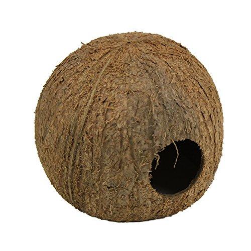 JBL 61512 Kokosnuss-Schale als Höhle für Aquarien und Terrarien Cocos Cava 3/4 L