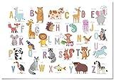 Panorama Póster Infantil para habitación Abecedario Animales 70x50cm - Impreso Papel 250g - Láminas para Enmarcar - Cuadros Infantiles - Cuadros para habitación bebés - Decoración habitación bebé