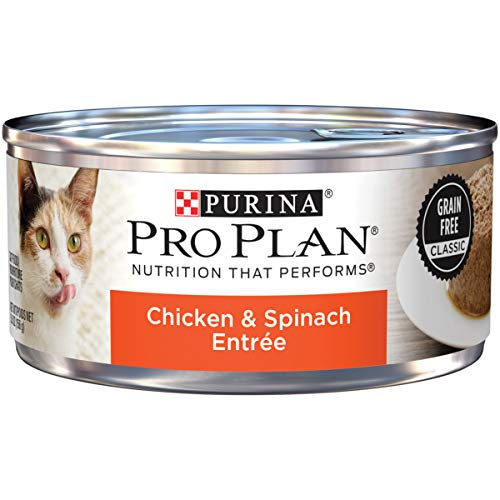 Purina Pro Plan Grain Free Pate Wet Cat Food, Chicken & Spinach Entree - (24) 5.5 oz. Cans