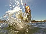 Bassmaster Pro John Murray instructs how use crank baits, split shot and rogues on post spawn fish