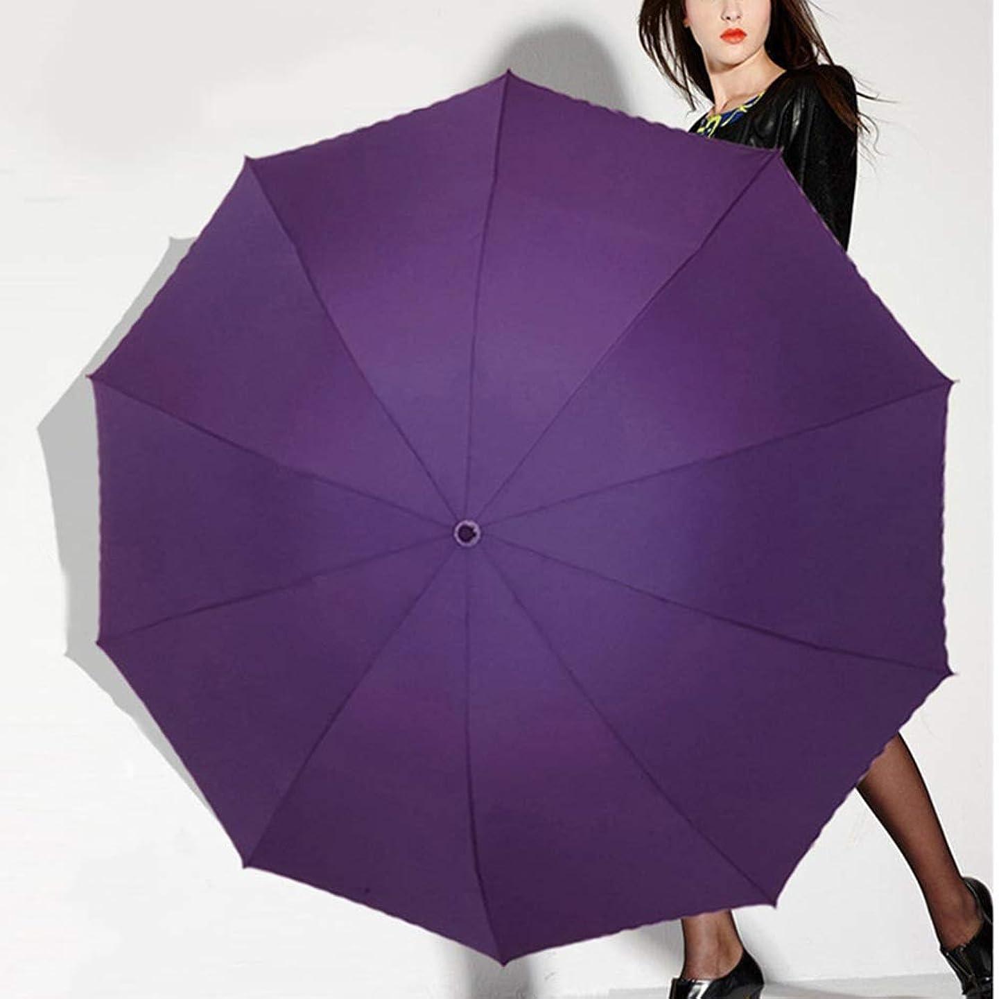 ご予約フクロウ砂漠DCAH 傘/折りたたみ式/防風/シンプルな大型ビジネス傘女性と男性(4色使用可能) 傘立て (色 : Purple)