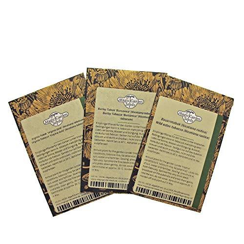 Shisha Tabak Samenset mit 3 Tabaksorten für Wasserpfeifentabak-Mischungen