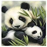 5D DIY Diamond Painting Kits for Adult and Kids Panda del prado Square Drill,30x30cm Full Drill Crystal Rhinestone Embroidery Sets Cross Stitch Art Craft Canvas Great for Home Wall Decor B1290