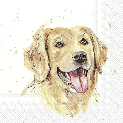 IHR 20 Servietten Motiv: Farmfriends Dog - Golden Retriever 33x33cm