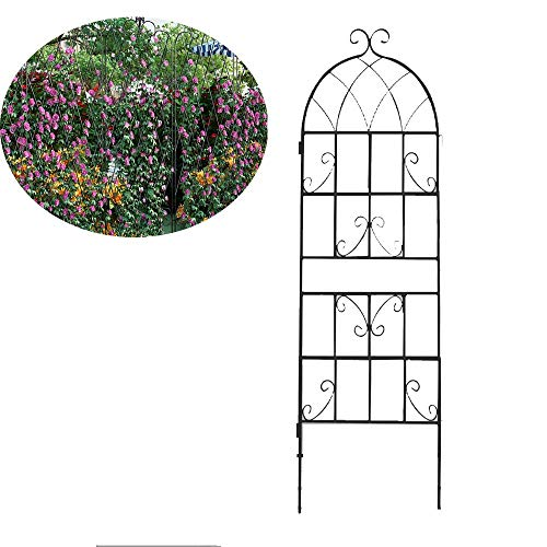 xgfqb Garden Trellis for Vines and Climbing Plants Rustproof Black Metal Wire Lattice Grid Panels for Ivy Roses Cucumbers, Clematis Support, Durable & Sturdy Beautiful Plant Decor80cm