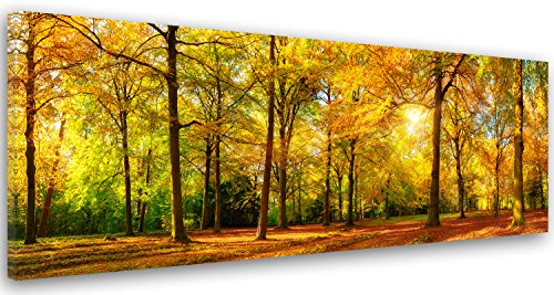 Feeby Frames, Cuadro en lienzo, Cuadro impresión, Cuadro decoración, Canvas de una pieza, 25x70 cm, BOSQUE, ÁRBOL, NATURALEZA, SOL, MARRÓN, VERDE