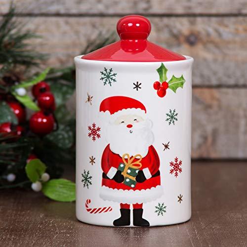 Widdop & Co Love Christmas - Barattolo per biscotti, motivo: Babbo Natale e fiocchi di neve