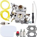 Kizut 545070601 C1M-W26C Carburetor for...
