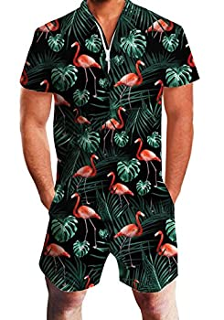 AIDEAONE Rompers for Men Summer 3D Flamingos Printed Designed Party Romper Hipster Jumpsuit L