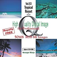 High Quality Digital Image for Professional Tropical Resort <1>