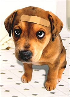 Band Aid Dog Dog Get Well Card