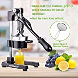 Slendor Commercial Citrus Juicer Manual Fruit Juicer and Orange Squeezer Metal Hand Press Juice, Heavy Duty Orange Juicer Lemon Lime Squeezer Pomegranate Premium Quality with Bonus Skimmer Spoon