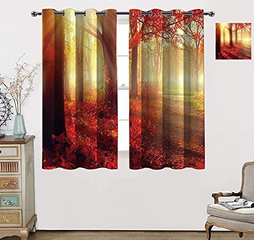 Amazing Fall Decor - Cortina aislante térmica, vigas de sol a través del bosque viejo de ensueño, cortinas opacas para sala de estar, 160 cm de ancho x 114 cm de largo, amarillo claro y naranja