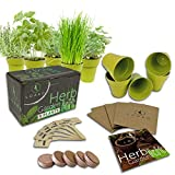 Indoor Herb Garden Starter Kit | 5 Non-GMO Herbs | Beginner Friendly | DIY Kitchen Herbs Growing Kit | Perfect Gift Idea | Basil, Parsley, Cilantro, Chives, Thyme