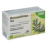 Foglie di rosmarino Arzneitee Rosmarini folium Salus 15 sacchetto filtro St
