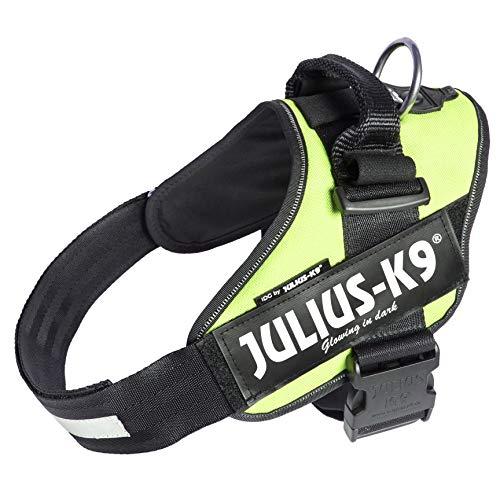 Julius-K9, 16IDC-NE-2, IDC-Powergeschirr, Hundegeschirr, Größe: XL/2, neon grün