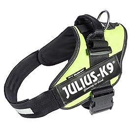 Julius-K9, 16IDC-NE-2, IDC Powerharness, dog harness, Size: XL/2, Neon Green