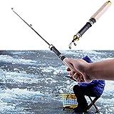 k-outdoor 釣りロッド 伸縮釣竿 氷釣り 冬釣り 筏釣り ワカサギ釣り 25-60cm 木目