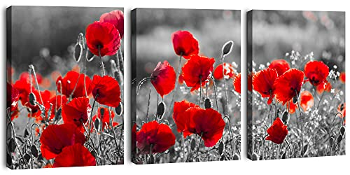 Red Flower Canvas Wall Art Bathroom Wall Decor Poppy Picture For Living room Bedroom 3 Piece Art Prints Ready to Hang