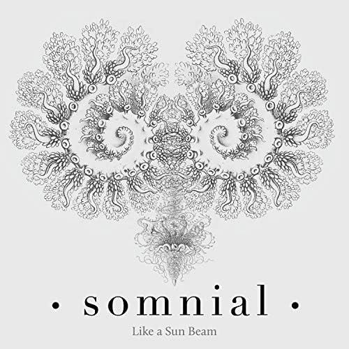 Somnial