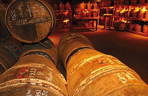 Martell V.S. Fine Cognac 1715 – Einzigartiger Cognac mit würzigem Geschmack – Ideal als Geschenk oder für besondere Anlässe geeignet – 1 x 0,7 L - 8