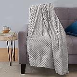 Amazon Basics Weighted Blanket with Minky Duvet Cover - 20lb, 48x72', Dark Grey/Grey