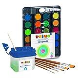 PRIMO Juego de 5 pinceles y depósito de agua – 24 colores en caja de pintura.