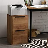 LUCYPAL 2 Drawer Wood File Cabinet, Wood Vertical File Cabinet, Home Office Cabinet with...