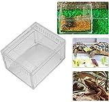 HEEPDD Acrílico Reptil Caja de alimentación Transparente Tipo de Deslizamiento Insecto Caja de visualización para grillos de araña Caracoles Ermitaños Cangrejos Tarantulas Geckos