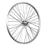 Taylor-Wheels 26 Pulgadas Rueda Trasera Bici buje Freno contrapedal Plateado